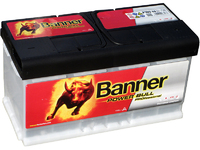 Banner Power Bull PROfessional P10040 (100 А/ч)